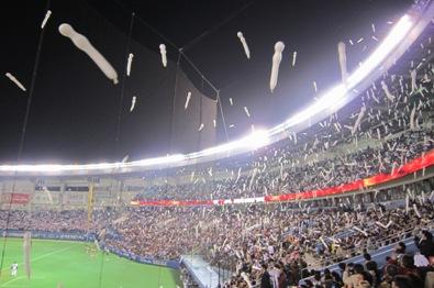20101104b.jpg