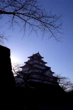 fukushima001.jpg